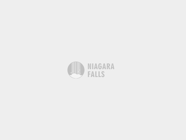 Niagara Adventure Theater- IMAX movie Ticket - Niagara Falls - NY